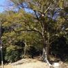 向かい風の中 短いけど盛りだくさんサイクリング 越生、都幾川、鳩山 バラエティに富んだルートで楽しむ!