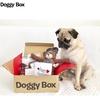 【愛犬おやつと愛犬おもちゃ】Doggy Box