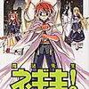 魔法先生ネギま・第13巻