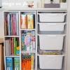 【わが家の図鑑活用】ニトリのカラーボックスを使ってすぐ手の届くところに収納する