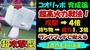 【ポケモン剣盾】 コオリッポ育成論 攻撃力4倍 ランクマッチで使える超高火力戦法! #38【ポケモン剣盾 ポケモンソードシールド】