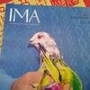 なぜ日本には「写真雑誌」が根付かないのか