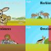 短編童話 The Gazelle's New Friend - 食物連鎖について学ぼう!