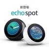 Amazon Echo Spot で何ができるのかをまとめ。 youtube等 動画等の視聴は? ネットワークカメラとセットで3万弱