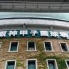 NANA MIZUKI LIVE PARK 2016@阪神甲子園球場
