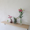 インテリアで春をたのしむ。インドアな自分のために、暮らしに花を。