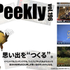 LLPeekly Vol.196 (Free Company Weekly Report)