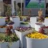【誰でも花壇を楽しめる】レイズドベッドのユニバーサルデザイン
