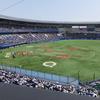 【初心者向け】プロ野球観戦のしかたを解説します!
