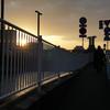九州一人旅1~博多駅周辺観光