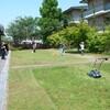 芝生を刈る バラ