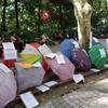 週末の社会科見学、上海の婚活広場とその謎