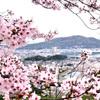 【今年は名草山!!から…新年会へ】
