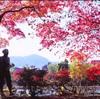 札幌市民がお世話になり過ぎてる撮影場所。中島公園と俺(カラーver)