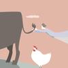 QOL(生活の質)を上げるために「鶏口牛後」の働き方を選んだ話