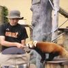 心のふるさと 北海道旅行 1日目 旭山動物園