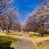 梅園公園~つくば市とその周辺の風景写真案内(19)