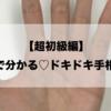 【超初級編】5分で分かるドキドキ手相鑑定
