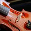 バイオリンを久しぶりに出して練習 & 調整に出す
