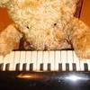 ピアノ好きなクマの絶対ピアノを弾きたい見果てぬ夢