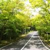 真夏の三倉岳で久々に周回を。