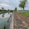 8月26日霞ヶ浦水系バス釣り。少し涼しくなった霞ヶ浦水系で2匹キャッチ!北浦など。