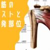 肩甲下筋の伸張テストと圧痛好発部位