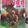 38式狙撃銃 vs M-1Cガーランド