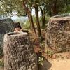 カンボジア・ラオスの旅 [16] / 手間から得るもの / ジャール平原 Site3へ