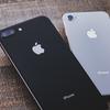 iPhone XSでもXRでもなく、今「iPhone 8」を購入した理由