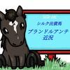 北海道でリハビリ中!シルク出資3歳馬プランドルアンテ近況(2020/01/17)