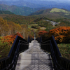 """""""天空回廊"""" 霧降高原で秋を感じる"""