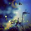 二十四節気 8月7日より立秋、サバトはルーナサ。魔法ハーブはエルダー🌿ライオンズゲート前日✨