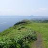 済州島(チェジュ島)春の祭り情報 #休愛里アジサイ祭り #牛島サザエ祭り