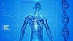 医者になれるのは何歳まで?医学部入学に年齢制限はあるか