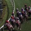 香港で競馬を見る