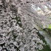 4/3~4/9 今週のまとめ (2017-W14)