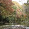 養老渓谷紅葉ハイキング