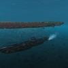 【WoWS】潜水艦テストから見る潜水艦の役割