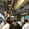 <JR特急乗車記> 貨物線を爆速 湘南ライナー1号 乗車記