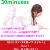 ネット内職マニュアル「30minutes-1日30分、スマホで副収入。」検証・レビュー