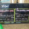〔ライブレポ〕 かき氷とビキニ 2016 @音霊 OTODAMA SEA STUDIO