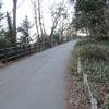 15:09からの山登り 日が暮れないうちに帰るんだよ!高尾山から稲荷山コースで下る。2021/02/19