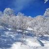 スキー旅行@野沢温泉③快晴の2日目(その1)