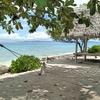 セブ島1泊3日一人旅!!ジンベイザメ,SPA,リゾートビーチを満喫