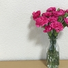 最近のお花