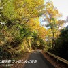 城内坂ロードレースのコース(妻と一緒)~11月16日~