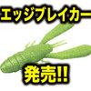 【EVERGREEN】琵琶湖プロガイド大西健太プロ監修のバックスライドクローワーム「エッジブレイカー」発売!