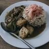 ゴーヤ豆腐カレー