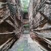 インドのジュナーガルで超巨大井戸、動物園、カレーの食べ放題などを楽しむ!